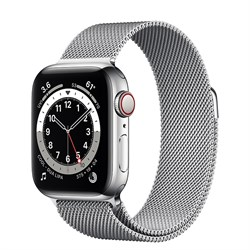 Часы Apple Watch 6 (Корпус из стали серебристого цвета - Миланский серебристый ремешок) - фото 35361