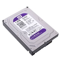 Внутренний жесткий диск HDD  WD  1TB  IntelliPower, SATA-III, 5400 RPM, 64 Mb, 3.5'', DV, пурпурный - фото 9884