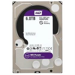 Внутренний жесткий диск HDD  WD  6TB  IntelliPower, SATA-III, 5400 RPM, 64 Mb, 3.5'', DV, пурпурный - фото 9887