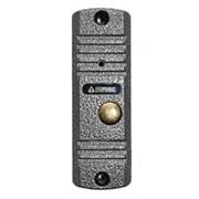 Вызывная видеопанель AVC-305 (PAL)